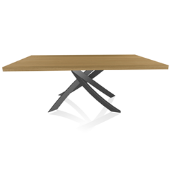 BONTEMPI CASA table with anthracite frame ARTISTICO 20.01 200x106 cm