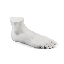 SELETTI furnishing accessory MALE FOOT MEMORABILIA MVSEVM
