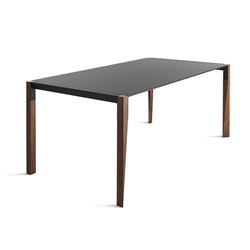 HORM rectangular table TANGO with black Fenix top